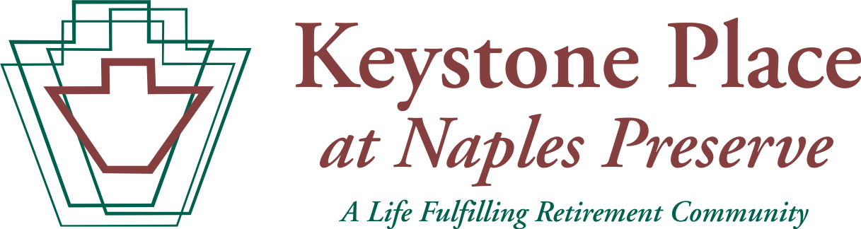 Copy of KPNP web logo